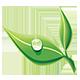 Plant2Plast - Miljøvenligt engangsservice